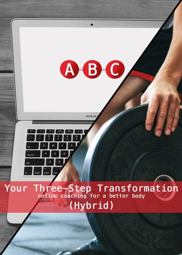 hybrid cover copy 2